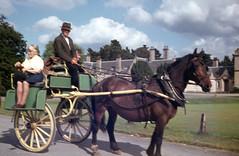 img312 (foundin_a_attic) Tags: man woman hourse cart houses