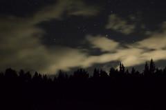Austral sky at midnight (miguelmondaca) Tags: cielo sur patagonia chile aysén medianoche austral bosque noche estrellas
