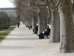 Relaxing in the Jardin des Plantes (Lazy B) Tags: trees people paris france wonder march vanishingpoint sitting lovely1 perspective seats avenue leafless fz5 distance 2009 lawns jardindesplantes
