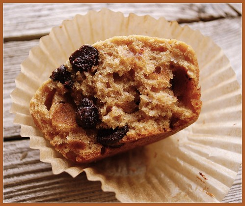 Espresso Chip Muffins in liner