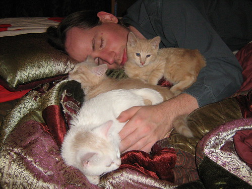 Brian and the kittens