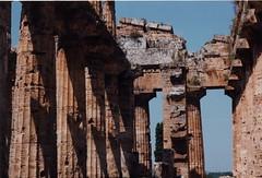 Paestum - Temple of Apollo (chi trevor's other pics) Tags: campania paestum greektemple templeofapollo tempiogreco