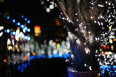 2000/1713*'+^z] (june1777) Tags: street light night 35mm canon eos bokeh f14 snap 1600 seoul 5d ef myeongdong thestreet ef3514