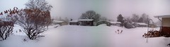 The worst snowstorm in decades? (Steve Brandon) Tags: street trees houses homes winter autostitch panorama snow ontario canada collage geotagged widescreen hiver ottawa snowstorm suburbia boring suburb neige nepean   mundane dull apartmentbuilding driveways lawns bungalows splitlevel     ranchstyle