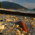 Beach Sand Thailand Island Asia Strand Asien