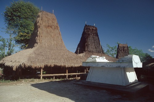 Sumba (Indonesia) - Village with tomb
