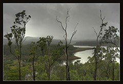 Lake Manchester (Ozventure) Tags: trees mist lake water rain clouds geotagged australia brisbane queensland lakemanchester mywinners geo:tool=gmif geo:lat=27483965 geo:lon=152749550