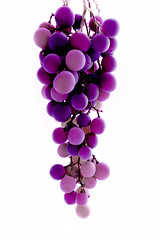 uva (Lampeduza) Tags: argentina frutas fruits photography purple violet mendoza grapes uva softbox lampeduza racimodeuvas
