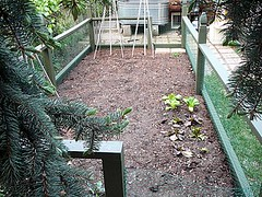 Garden Bed After