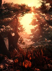 (ConnecteD\_) Tags: shadow warrior 2 flying wild hog landscape nature trees fire flowers sun forest screenshot panorama outdoor