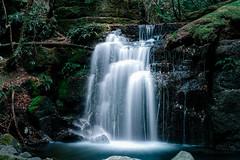 20170208 Photo 003 (flicka.pang) Tags: fujifilm fujifilmxt1 fujifilmxf35mmf14r stricklandfalls xt1 landscape waterfall waterscape hobart tasmania australia