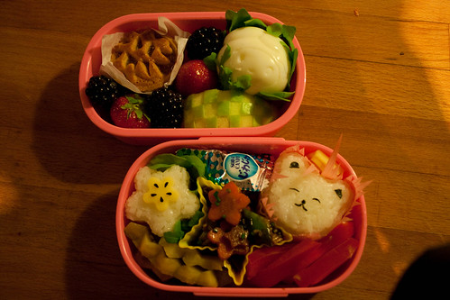 Bento #27 [13.05.2009] from above