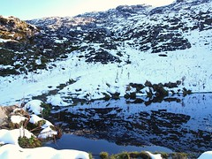 Silberen 048 (Shepherd & his Hot Dogs) Tags: schnee mountain snow mountains hot schweiz switzerland hiking natur berge climbing his karst crevasse bergwandern bergtour doline spalten silberen dogs pragelpass karrenfelder shepherd pyrenische berghunde pyrenean