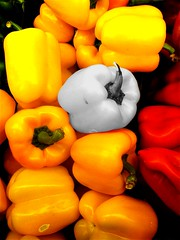I Hate It When They Lose Their Colour (mightyquinninwky) Tags: red blackandwhite bw colour green yellow blackwhite 5 kentucky lexingtonkentucky gray explore 100views richmondroad peppers suburbs produce onwhite picnik kroger greenpeppers onblack selectivecolour redpeppers yellowpeppers 5faves magicdonkey 10faves fayettecountykentucky outercircle centralkentucky beautifulcapture viewonblack aplusphoto colourartaward artlegacy imuniquecreative thebluegrassstate viewonwhite mymagicyellowdress sayitwithaphotograph manowarblvd theproducedepartment graypeppers explorewinnersoftheworld exploreformyspacestation bestofformyspacestation