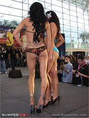 2008 san diego car show bikini contest what fuctioning