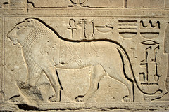 Egyptian bas-relief of an Ethiopian Lion ( Libyan Soup) Tags: cats wall cat lion egypt bigcat egyptian egipto karnak luxor gypten egitto hieroglyphs thebes hieroglyphics egypte egypten basrelief ethiopian egiptus egipt gypte hieroglyphic karnaktemple egypti templeofamun  barbarylion libyansoup egiptio egiptujo