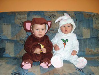 Affe und Hase