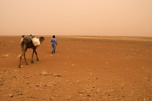 Walking thgough Sahara