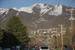The hill I lived on