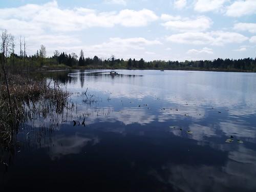 Lake martha