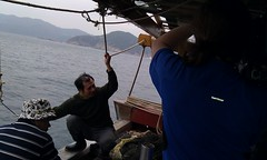Dredging for lancelet and trying to stop the cameraman falling in the South China Sea