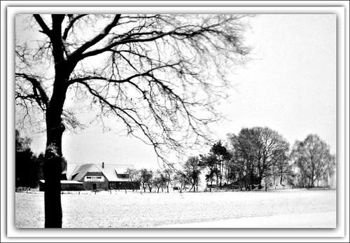 winter landscape on highway 27 (262?03)