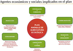 Plan-Andaluz-AE-Agentes-500
