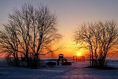 Oulu - Playground at Winter (Lucio José Martínez González) Tags: travel viaje winter sunset tree playground suomi finland geotagged arbol invierno puestadesol oulu 100club finlandia blueribbonwinner parqueinfantil 50club luciojosémartínezgonzález luciojosemartinezgonzalez holidaysvacanceurlaub diamondclassphotographer lickrdiamond geo:lon=254138333333333 geo:lat=650298333333333 northernostrobothnia
