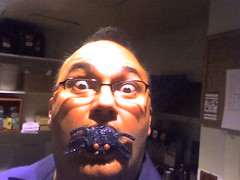 Spider cupcakes...