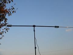 buddipole for 15m