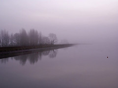 fog at the reservoir (algo) Tags: trees england water fog reflections photography topv222 algo topv50 startops tringreservoirs 10faves