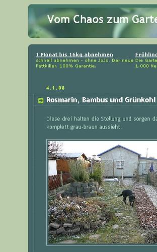 Screenshot Diätwerbung