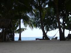 P1000805 (Brett Porter) Tags: philippines bohol panglao amarela