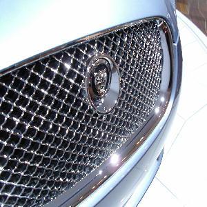 Jaguar Grill 2210286507_2d80b6de13