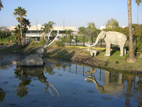 Homeschool Field Trip Must La Brea Tar Pits Los Angeles