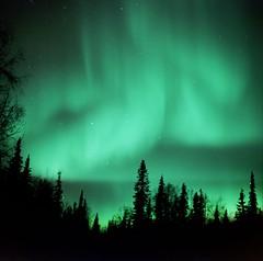 AAA012 (Kuskulana Steve) Tags: alaska aurora northernlights auroraborealis april2008kinleys kuskulanaspacesphotography