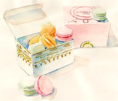 macarons box Feb 08 (Paris Breakfast) Tags: watercolor macarons parisbreakfasts
