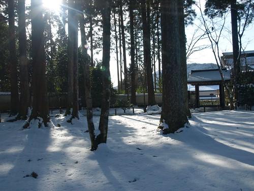 雪の大原 (36)