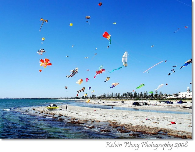 International Kite Festival 2008 # 2  国际风筝节