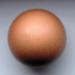 Sash from above (Werner Schnell (1.stream)) Tags: nikon egg ei werner ws schnell eierkopf mywinners goldstaraward wernerschnell