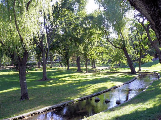 Garden in Hokkaido University 北海道大学の庭