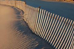 The Jersey Shore (BJJS) Tags: ocean sea seascape beach coast pier newjersey sand surf tide asburypark nj shore bradley jersey boardwalk belmar jerseyshore avon fishingpier springlake oceangrove thejerseyshore seagirt jerzphoto