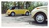 17_02_05_083p (2) (Quito 239) Tags: volkswagen 1971volkswagen 1971volkswagensuperbeetle superbeetleconvertible vw bug vocho escarabajo puertorico haciendaigualdad volky
