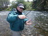 Hat Creek dry fly gem
