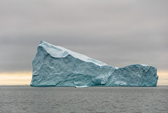 Iceberg in open sea (dani.Co) Tags: fab nikon explore greenland iceberg explored danico planetindanger danicophoto