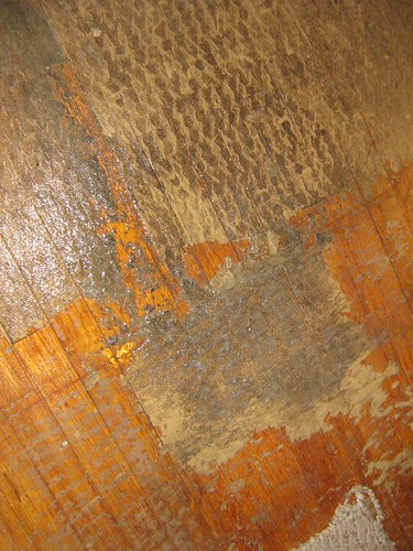new old house blog archive carpet padding moster meet thy doom