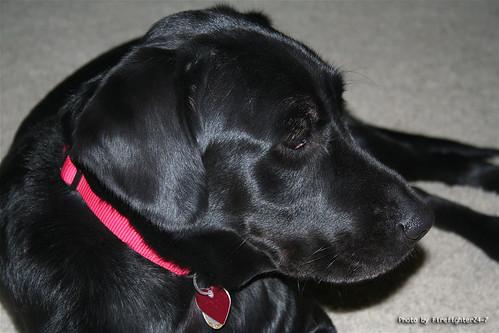 Grace 11/24/2007