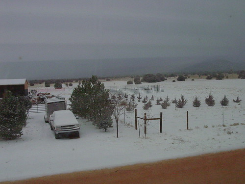 New Mexico Snow - Nov 23, 2007