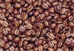 Le test de l'homme dans les grains café