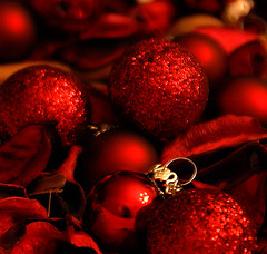 SEASON'S GREETINGS ( goraiapick  - busy -) Tags: christmas xmas fab festive christmascards happyholidays soe seasonsgreetings onexplore anawesomeshot diamondclassphotographer top20red colourartaward top20everlasting
